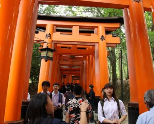 Keep Moving   Taiji-Therapie - Welt Parkinson Kongress 2019 in Kyoto